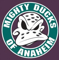 Anaheim Ducks Alternate Logo  Iron-on Stickers (Heat Transfers) version 1