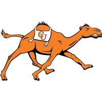 Campbell Fighting Camels 2008-Pres Alternate Logo Decals Stickers