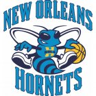 New Orleans Hornets Iron Ons
