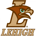 2004-Pres Lehigh Mountain Hawks Alternate Logo Iron-on Stickers (Heat Transfers)
