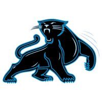 Carolina Panthers Alternate Logo  Iron-on Stickers (Heat Transfers) version 2