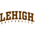 2004-Pres Lehigh Mountain Hawks Wordmark Logo Iron-on Stickers (Heat Transfers)