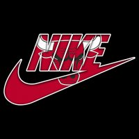 Chicago Bulls nike logo iron on sticker