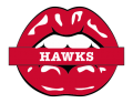 atlanta hawks script logo iron on transfers