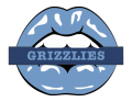 memphis grizzlies script logo iron on transfers