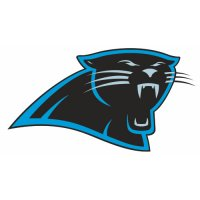 Carolina Panthers Primary Logo  Iron-on Stickers (Heat Transfers)