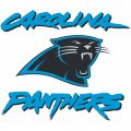 Carolina Panthers Alternate Logo  Iron-on Stickers (Heat Transfers)
