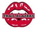 portland trail blazers script logo iron on transfers