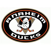 Anaheim Ducks Alternate Logo  Iron-on Stickers (Heat Transfers)