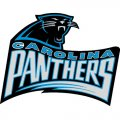 Carolina Panthers Alternate Logo  Iron-on Stickers (Heat Transfers) version 4