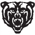 1988-Pres Mercer Bears Partial Logo Iron-on Stickers (Heat Transfers)